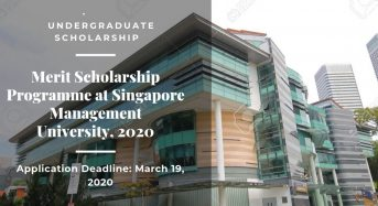 Merit programme at Singapore Management University, 2020