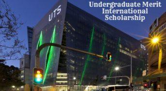 Undergraduate Merit International Scholarship at the University of Technology Sydney, 2020